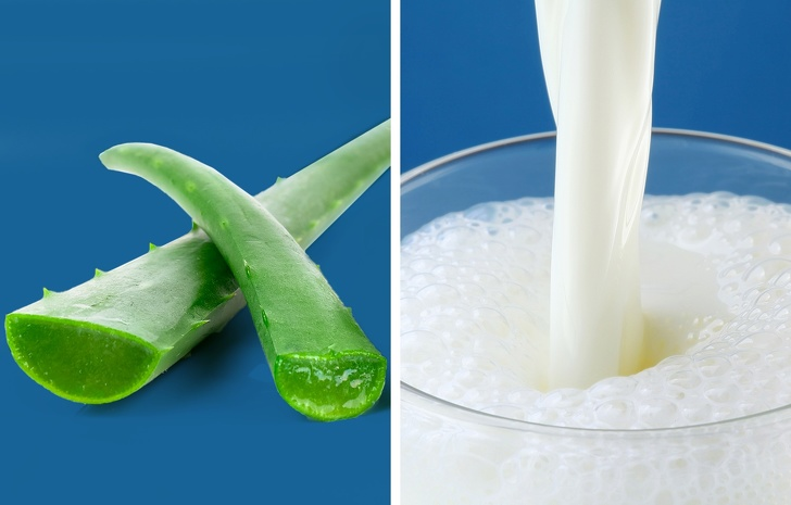 Aloe Vera and milk