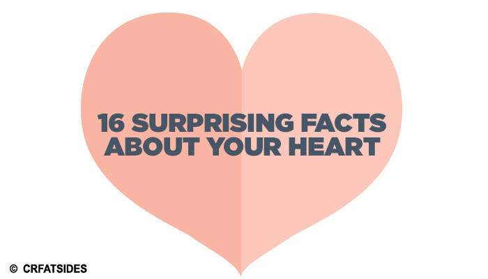 16 Surprising Facts About Your Heart That Are Hard To Believe