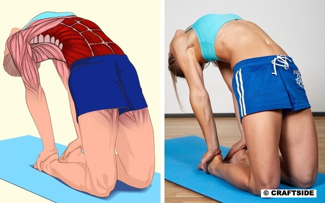 Posture Exercises: 10 Poses Will Show Which Muscles You Stretch
