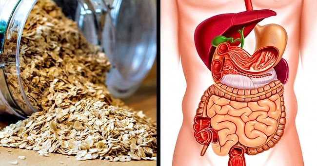 The benefit to Your Body If You Start Eating Oatmeal Every Day