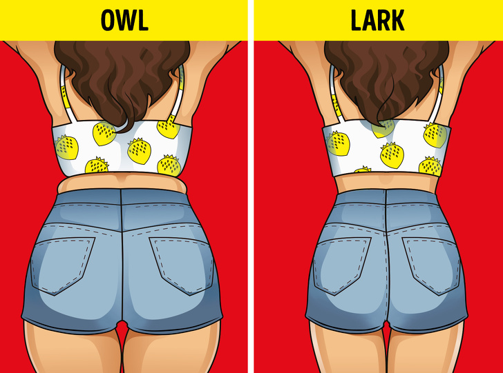 how to lose a few pounds in a day