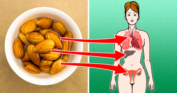 almonds benefits for brain