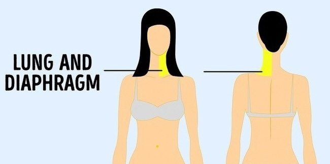 9 Types of Referred Pain That You Should Know About And Never Ignore