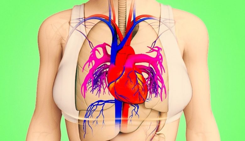 Your Body Will Warn You With These 8 Signals Before a Heart Attack