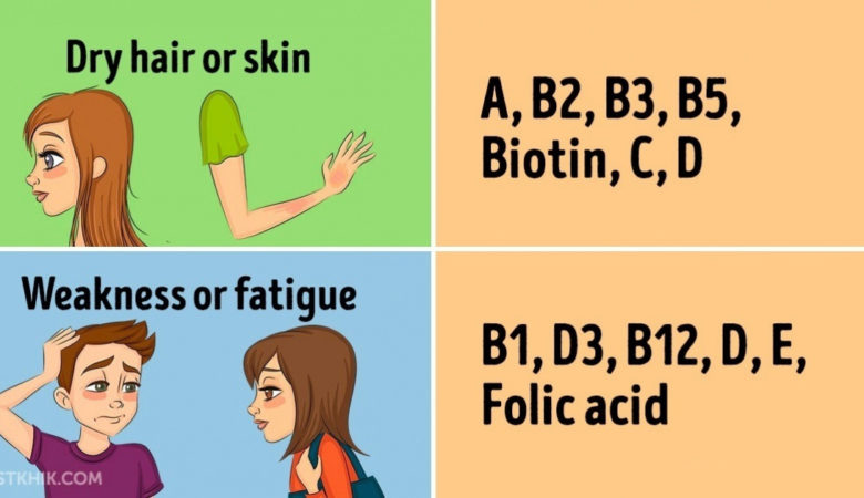 Everything You Want To Know About Vitamins
