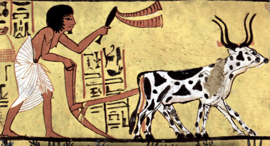 15 Ancient History Facts You Definitely Didn't Learn In School