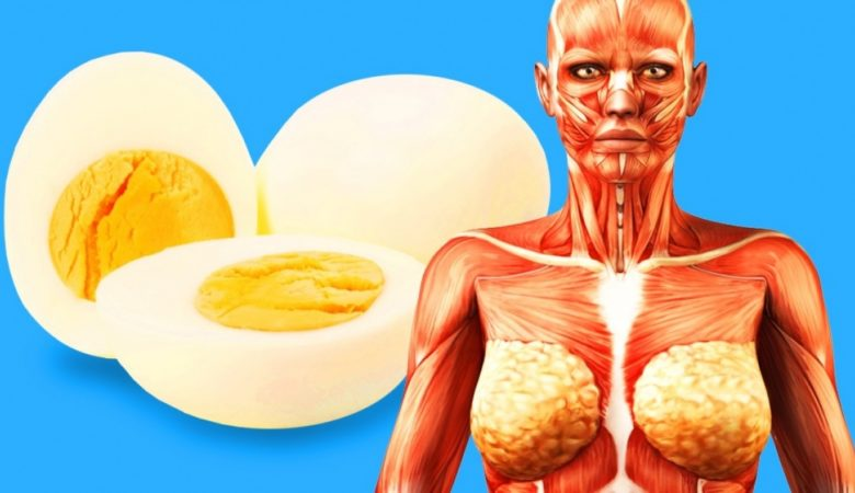 This Will Happen to Your Body If You Start Eating 2 Eggs a Day