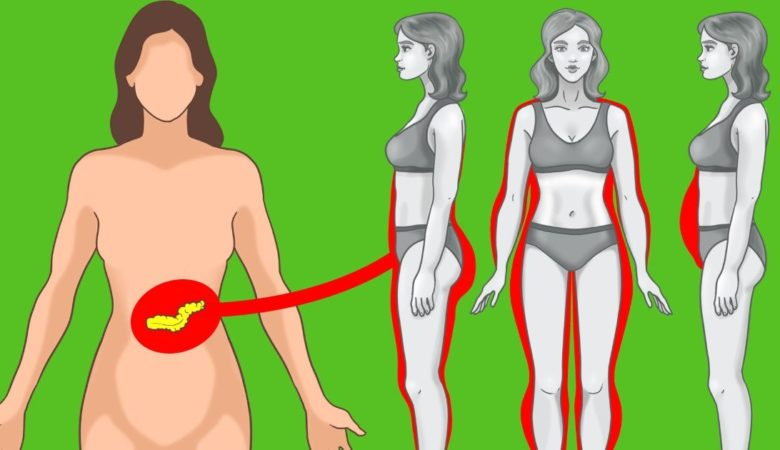 8 Key Tips to Reduce Insulin Level For Your Weight Loss