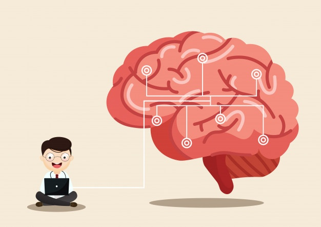 How To Boost Your Memory And Maintain a Healthy Brain