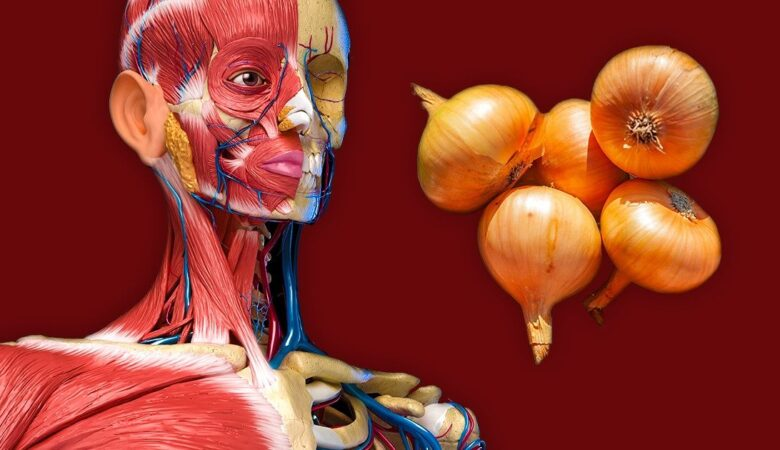 7 Things That Can Happen to Your Body if You Start Eating Onions More Often