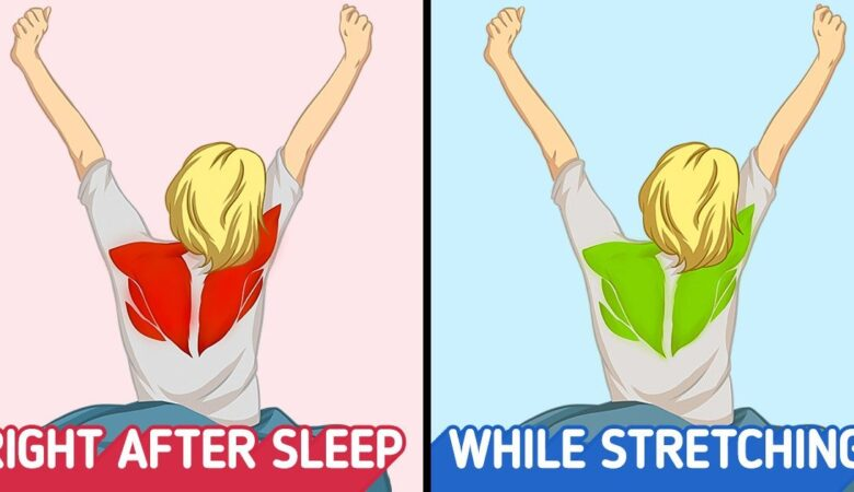 Why Do We Instinctively Stretch When We Wake Up? and Why It's So Important