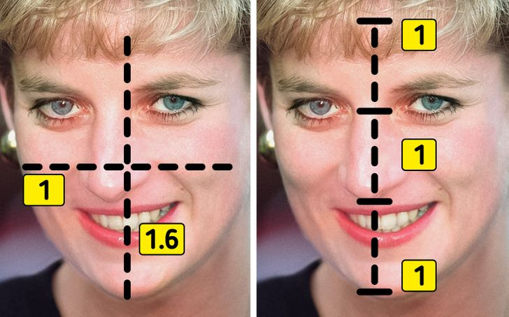 According to Science Princess Diana Is the Most Attractive Royal of All Time