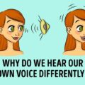 Why Does My Voice Sound Different on a Recording? The Real Reason Will Surprise You
