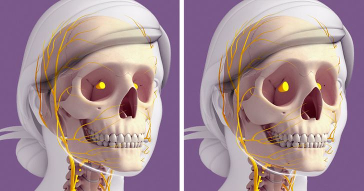 How Our Bodies Change After 30, and Why Our Faces Can Age So Drastically