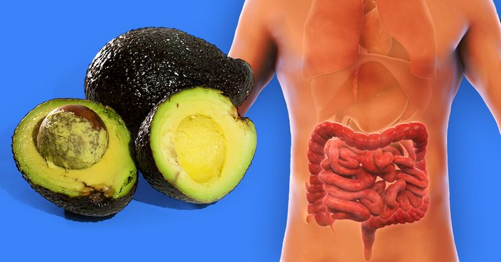What Happens to Your Gut If You Eat Avocado Every Day
