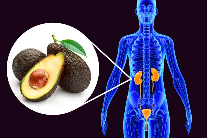 What Can Happen to Your Body If You Start Eating an Avocado a Day for 30 Days