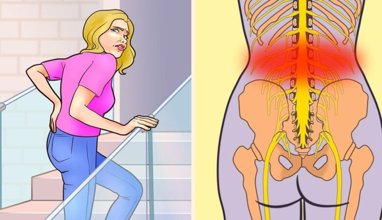 6 Things That May Cause Lower Back Pain and How to Avoid Them